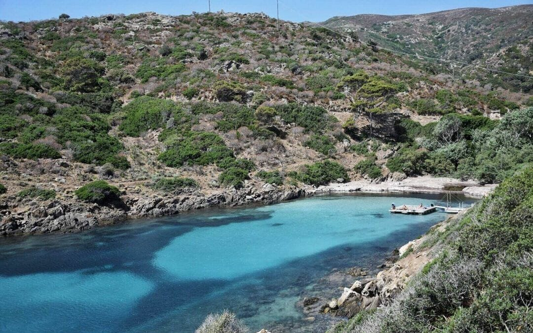 A Complete Guide To Diving In Sardinia