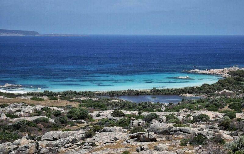 Asinara sailing